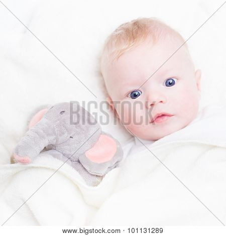 Baby with plush toy.