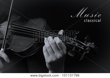 Violinist playing violin. Black and white photo
