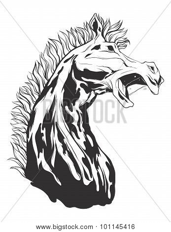 Vector Illustration With Horse Head