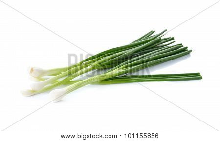 Whole Green Spring Onion On White Background