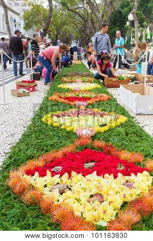 Flower carpets along the central promenade in Funchal. Madeira, Portugal