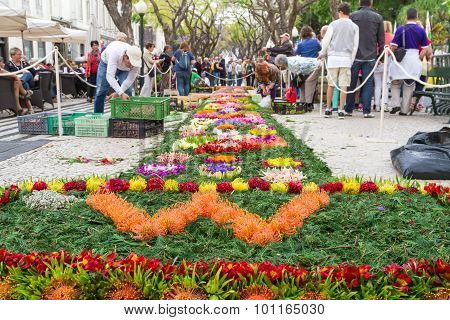 Preparations for the Flower Festival of Funchal, Madeira Island, Portugal
