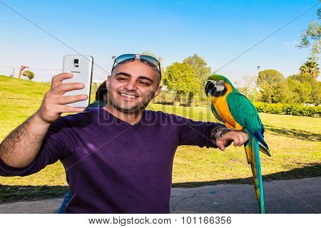 Playing With Parrot Macaws ( Ara Ararauna)