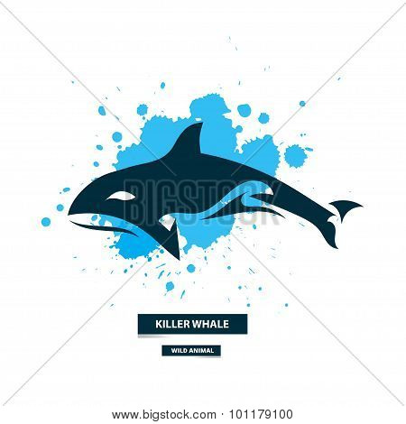 Artistic Killer Whale Icon On The Colorful Blots Background. Stylized Graphic Illustration. Vector W