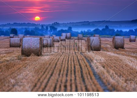 Amazing rural scene on autumn field with straw roles and dramatic evening light.