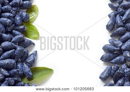 Honeysuckle Blue Berry Fruits On White Background
