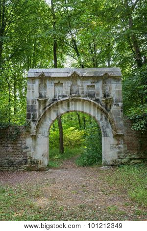 Medieval abbey ruins in the heart of the forest