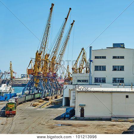 Train And Cranes In Seaport Of Odessa