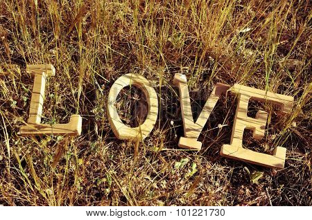 high-angle shot of wooden letters forming the word love on the grass