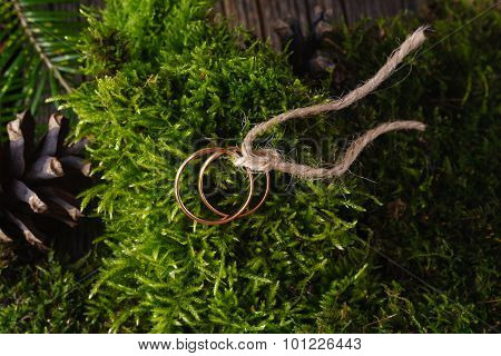 Two Golden Wedding Rings On Moss