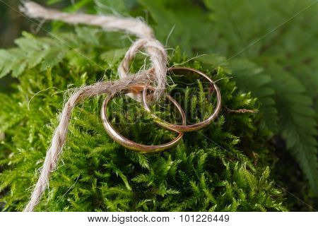 Two Bound Golden Wedding Rings On Moss