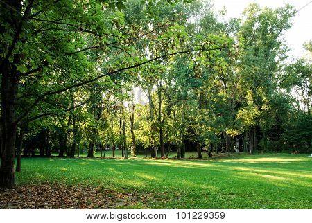 Park of resistance, Riccione