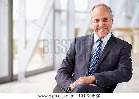 Portrait of smiling senior corporate businessman, waist up