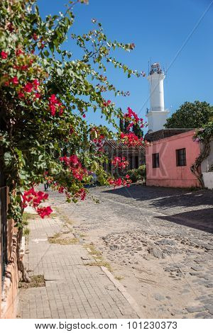 Colonia De Sacramento Town, Uruguay, Traveling South America. Beautiful Adventure.