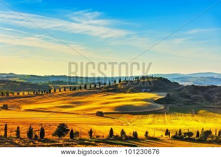 Tuscany, Rural Landscape. Countryside Farm, Green Fields And Cypress Trees. Italy