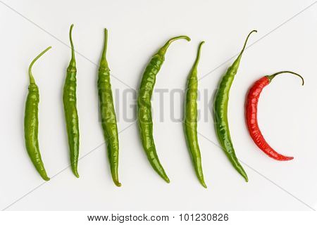 Red And Green Chilli Peppers Ob White Background