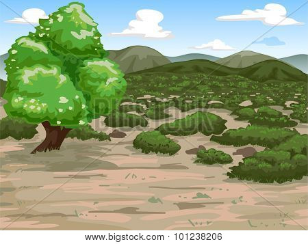 Illustration Featuring a Wide Expanse of Mediterranean Shrubland