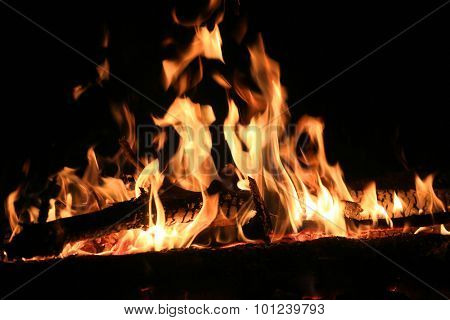 Flame of campfire at night time