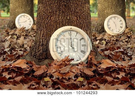 Fall Time Season Clocks Leaf Forest Background