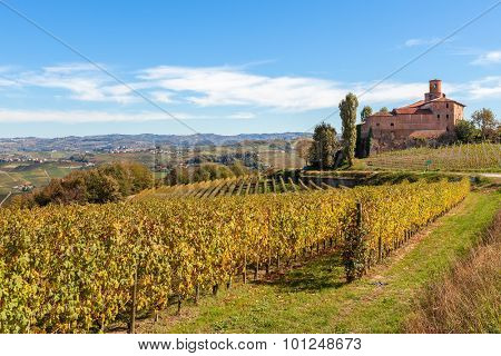 Yellow autumnal vineyards and small medieval castle on background in Piedmont, Northern Italy.
