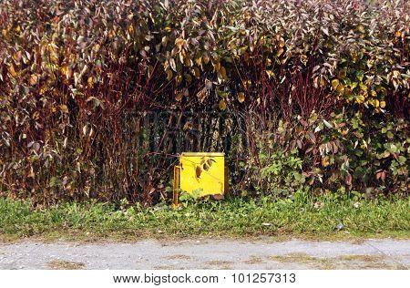Yellow Waste Bin In Park.