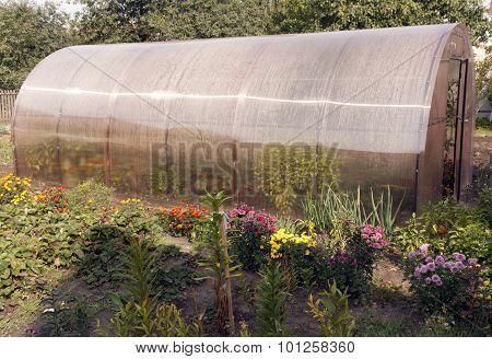 Small Private Greenhouse.