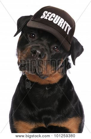Rottweiler Security