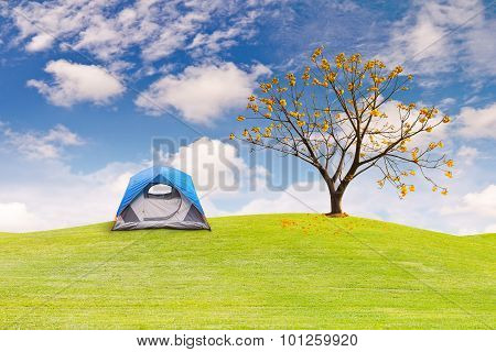 Dome Tent On Green Grass Field
