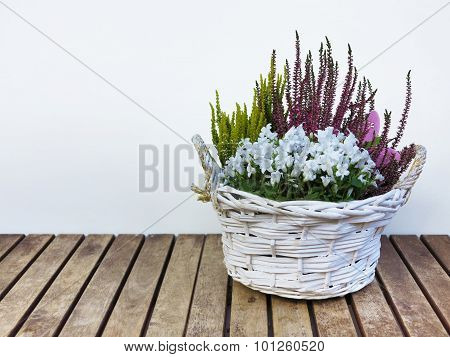 flowers and heather in basket