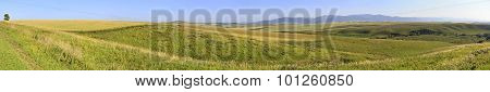 Beautiful panorama agricultural fields in August.