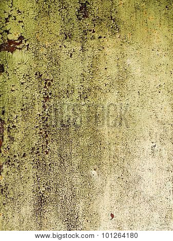 Textured Background Cracked Green Paint On An Old Metal Gate. Grungy Metal Surface. Great Background