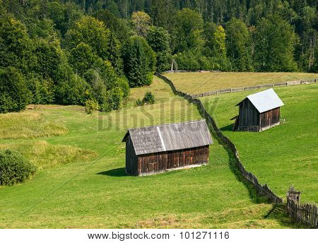 Wooden Shacks On The Field With The Forest Behind