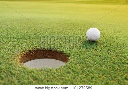 Golf ball on the green course