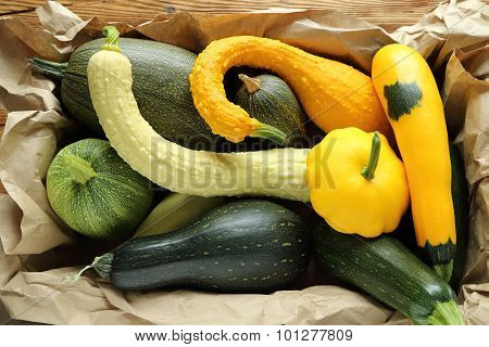 Squashes  And Zucchini