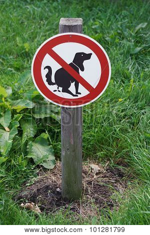 prohibition sign no dog pooping