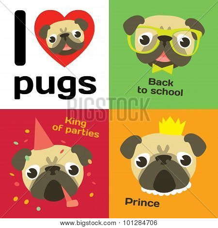 Funny pugs in different situations.