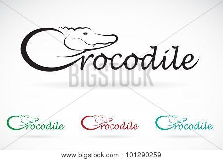 Vector Design Crocodile Is Text On A White Background.