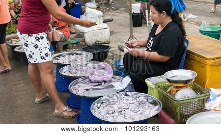 Woman Sell Cuttlefish In The Local Market