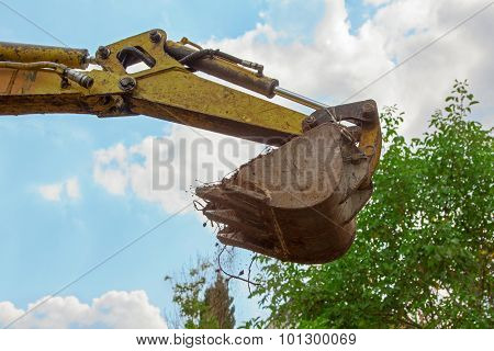 Shovel Of A Mini Digger, Blue Sky And Tree Crown