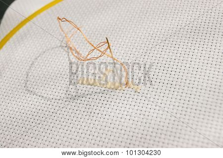 Thread And Orange Needle
