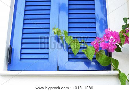 Window with blue shutters on white wall