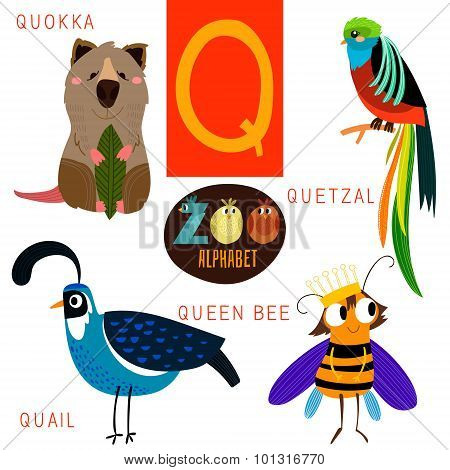 Cute Zoo Alphabet In Vector.q Letter. Funny Cartoon Animals:quokka,quetzal,quail,queen Bee. Alphabet