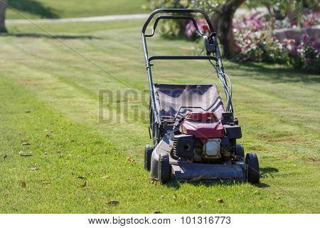 Modern gasoline lawn mower on a green meadow. Garden equipment