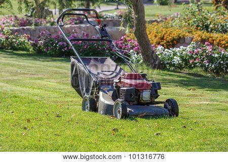Modern gasoline lawn mower on a green meadow. Gardening equipment