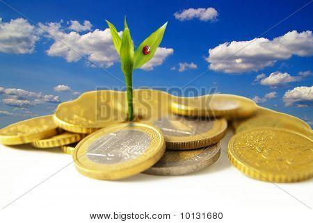 crecimiento de euro