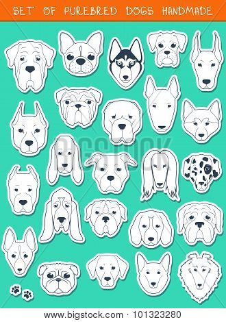 Set of 24 stickers different breeds dogs, handmade. Head dog