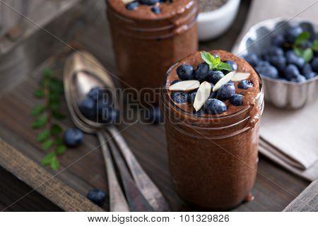 Healthy vegan chocolate chia pudding