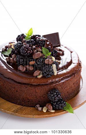 Chocolate cheesecake isolated on white background