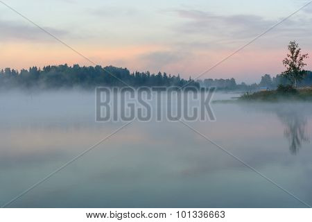 Lake Sunrise Fog Reflection Tree