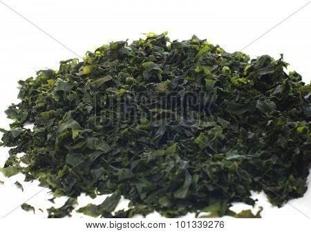 Seaweed wakame ( lat. Undaria pinnatifida) closeup